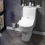 3 avantages d'une toilette japonaise
